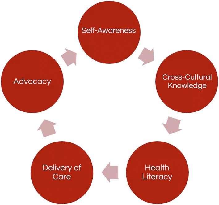 5 cultural competencies