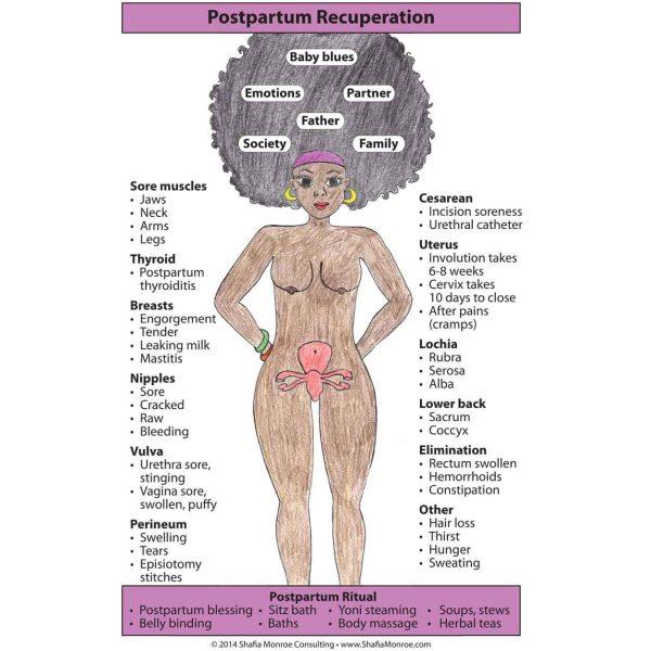 Postpartum Recuperation Chart